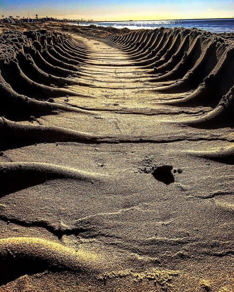 Sand tracks 2016